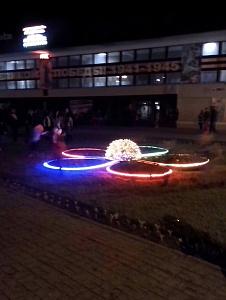 Цветок-клумба- г.Суровикино